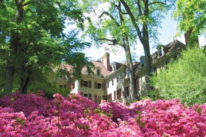 Winterthur spring azaleas